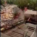 arroyos Barranquilla basuras